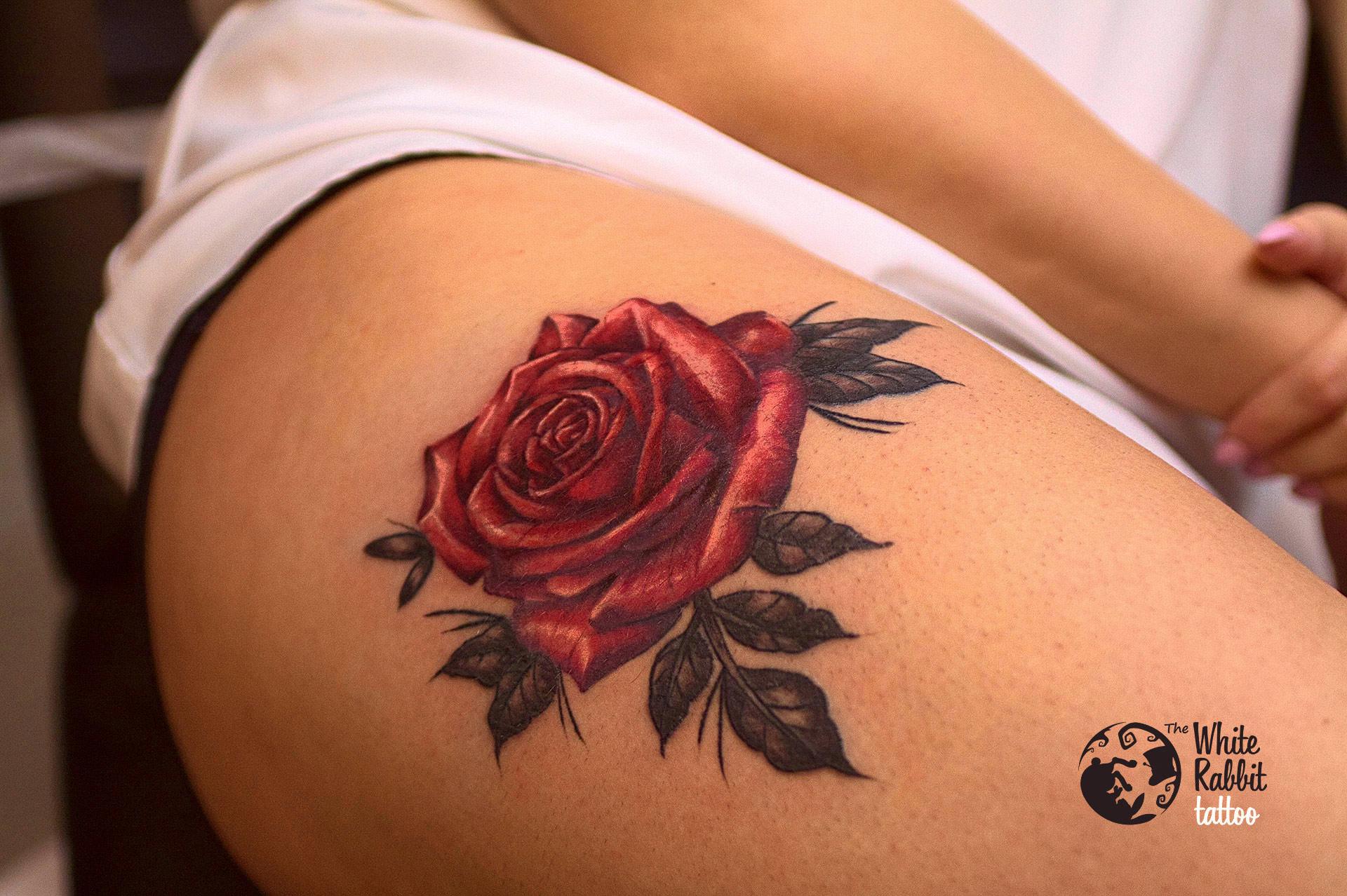 Kolorowa róża